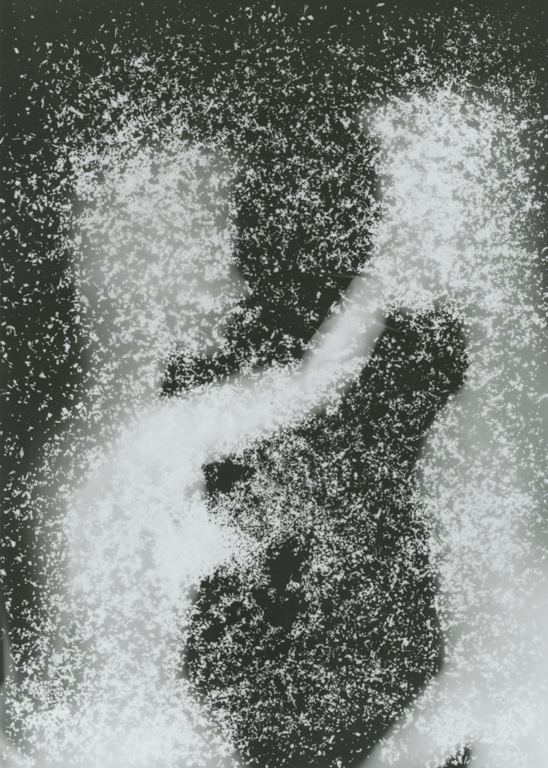 Photogram_49_JW.png
