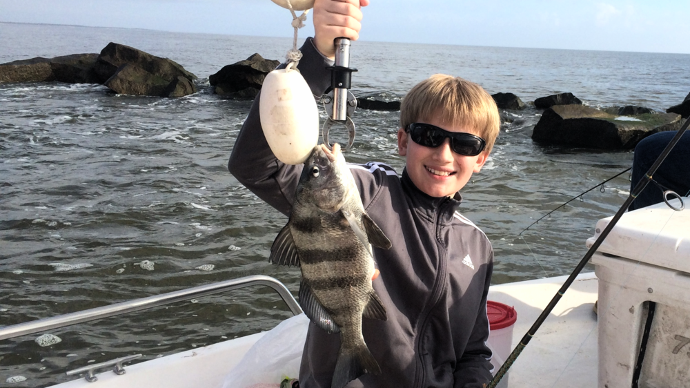 A black drum one of our fisherman caught in April, 2016.