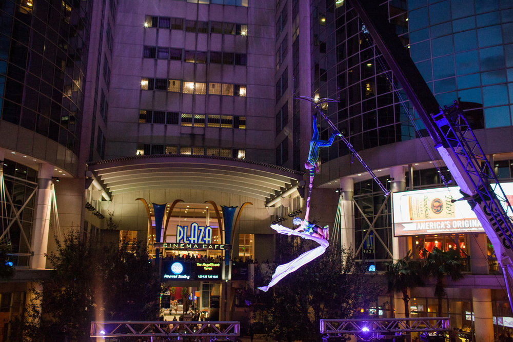 The wonder of Cirque du Soleil high above the streets (Photo : Vine and Light)