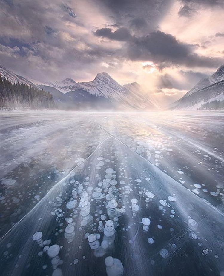 Abraham Lake, Alberta by   @marccadamus