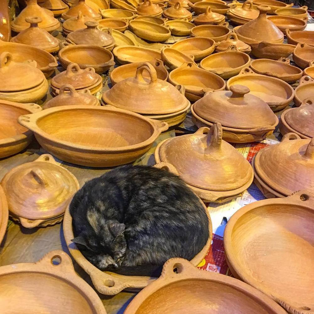 If it fits, I sits. Tetuan, Morocco. original post