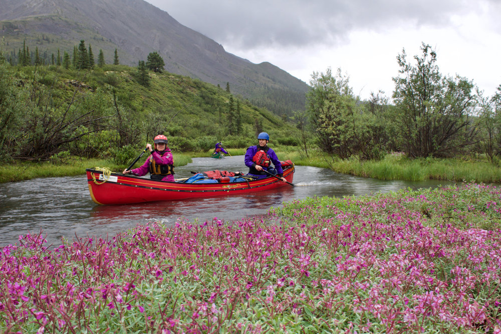 Mountain River Paddling Push me pull you creek.jpg