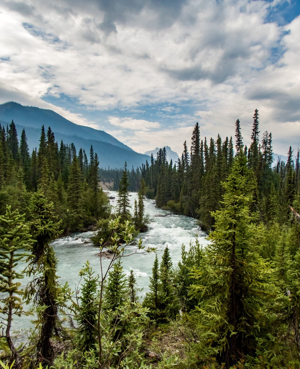 Nahanni tributary, Britnell Creek  |   photo by Joel Hibbard