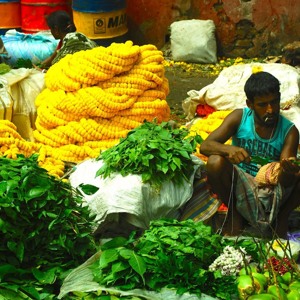 India-Calcutta-Malik-Ghat-flower-market.jpg