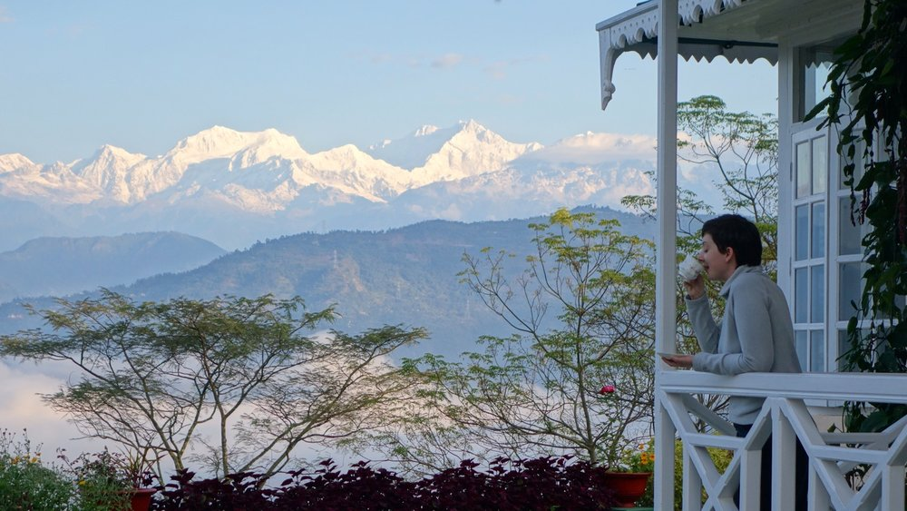 India-Glenburn-view-tea.jpg
