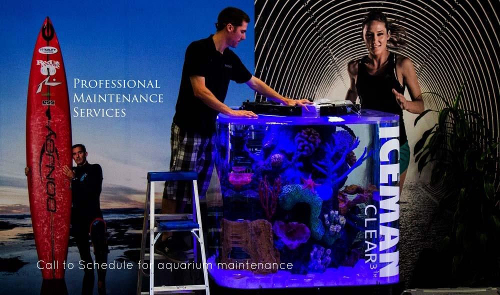 Copy of aquarium maintenance services