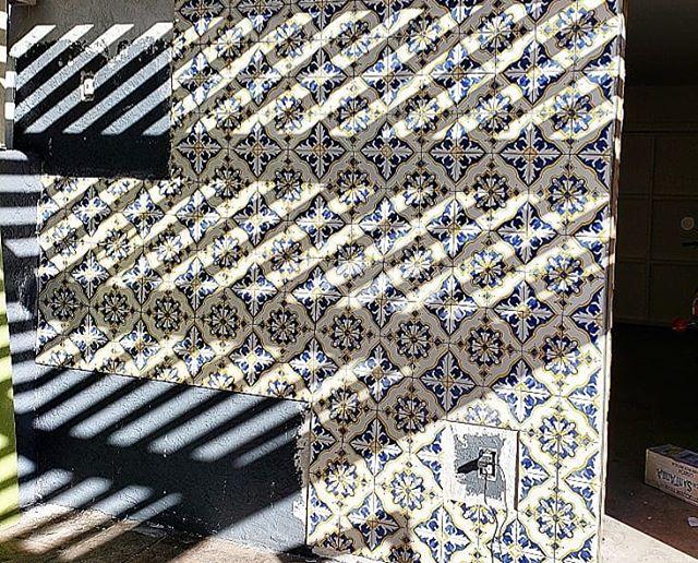 Making progress!  #decotiles #flamingo #tile #sandiego #california #blue #yellow #outside #cementtile #decortiles #design #fun #havingfun #herewego #ihavethisthingwithtiles #lovewhatyoudo #progress #remodel #style #tilestyle #tilelove #tileinstallation #tiler #tiles #tilework #tileaddiction #tiledesign #tilesetter #tileart #decortiles #tiled