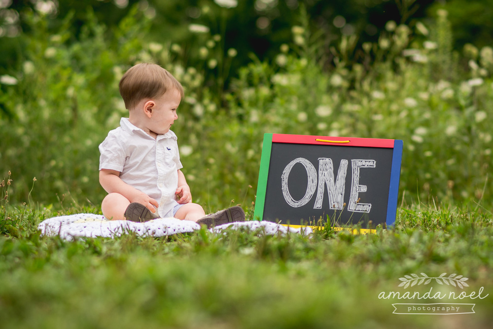 one year, kids, baby, toddler, lifestyle, milestone, mini