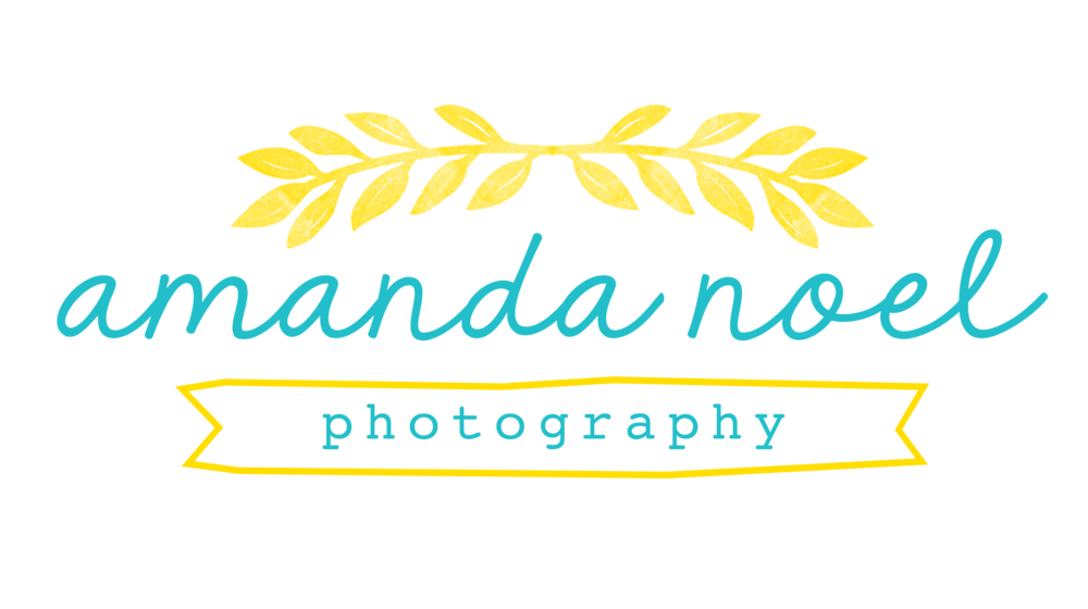 Amanda Noel photography | Southern Ohio family photographer
