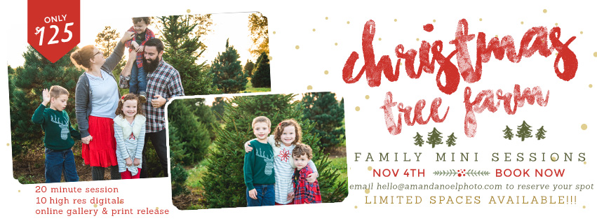 Click on image to book your mini session online!!