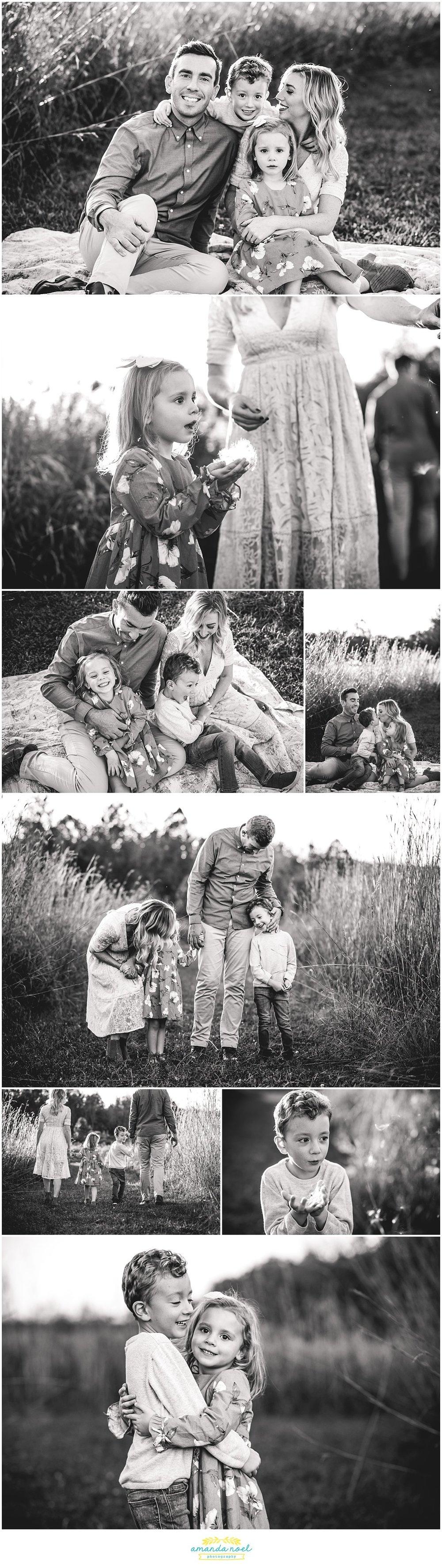 Columbus Ohio Family Photography | Amanda Noel Photography