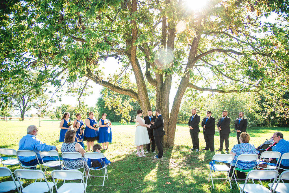 Columbus Ohio Wedding Photographer | Outdoor wedding under a tree