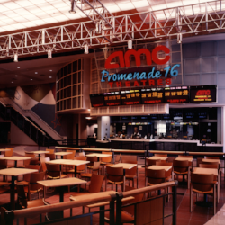 Client:  AMC Theatres   Project:  AMC 16 The Promenade  Location:  Woodland Hills, CA  This new facility was designed as a replacement for a department store damaged in the Northridge earthquake and received the Valley Design Award. It integrated a new food court and 40,000 SF of retail tenant space as well.