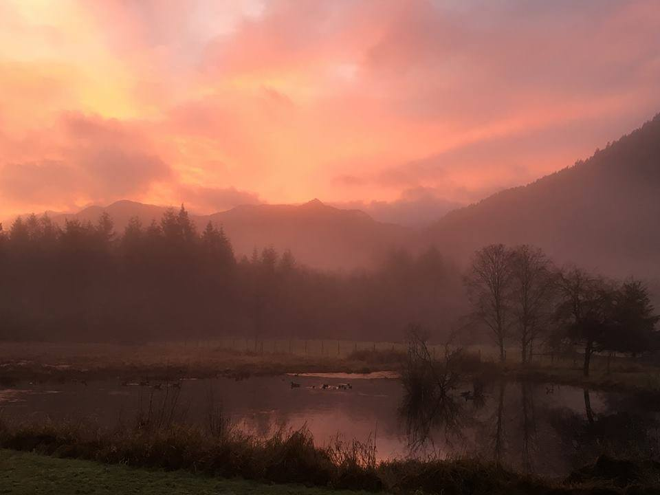 winter sunrisejpg.jpg