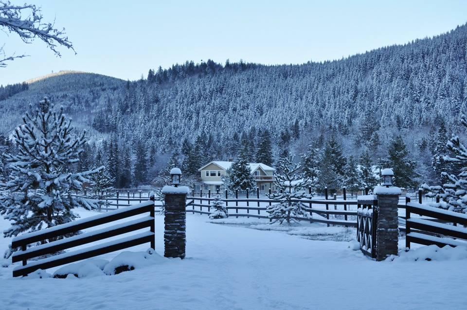 WINTER GATE.jpg