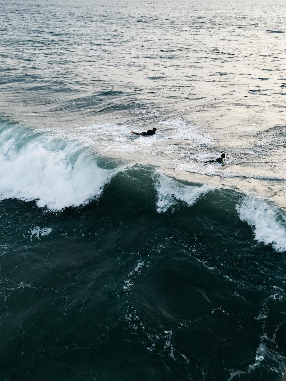 Vencie Beach_from Camera (7 of 34).jpg