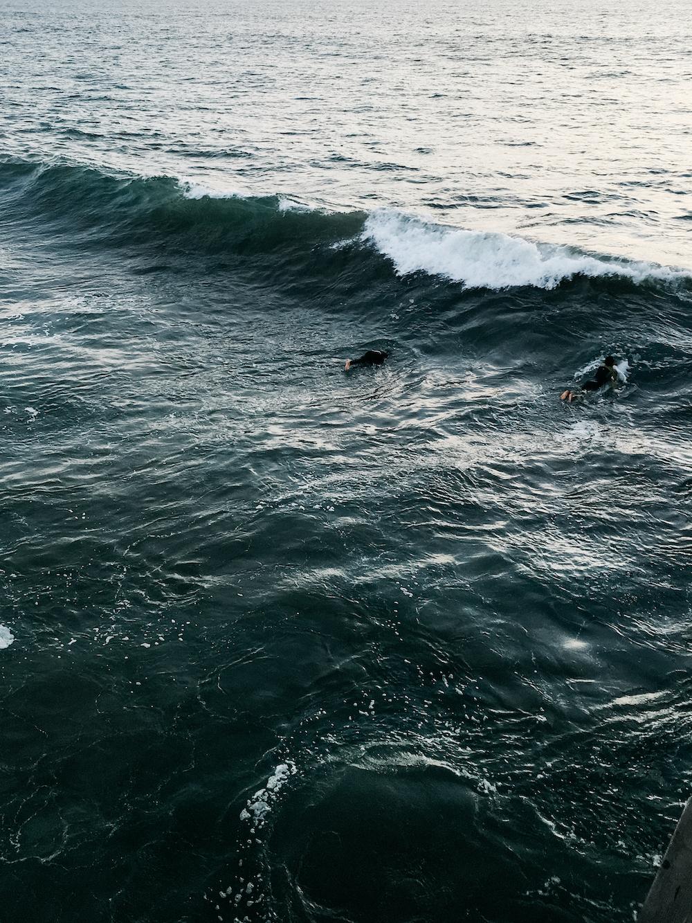 Vencie Beach_from Camera (6 of 34).jpg