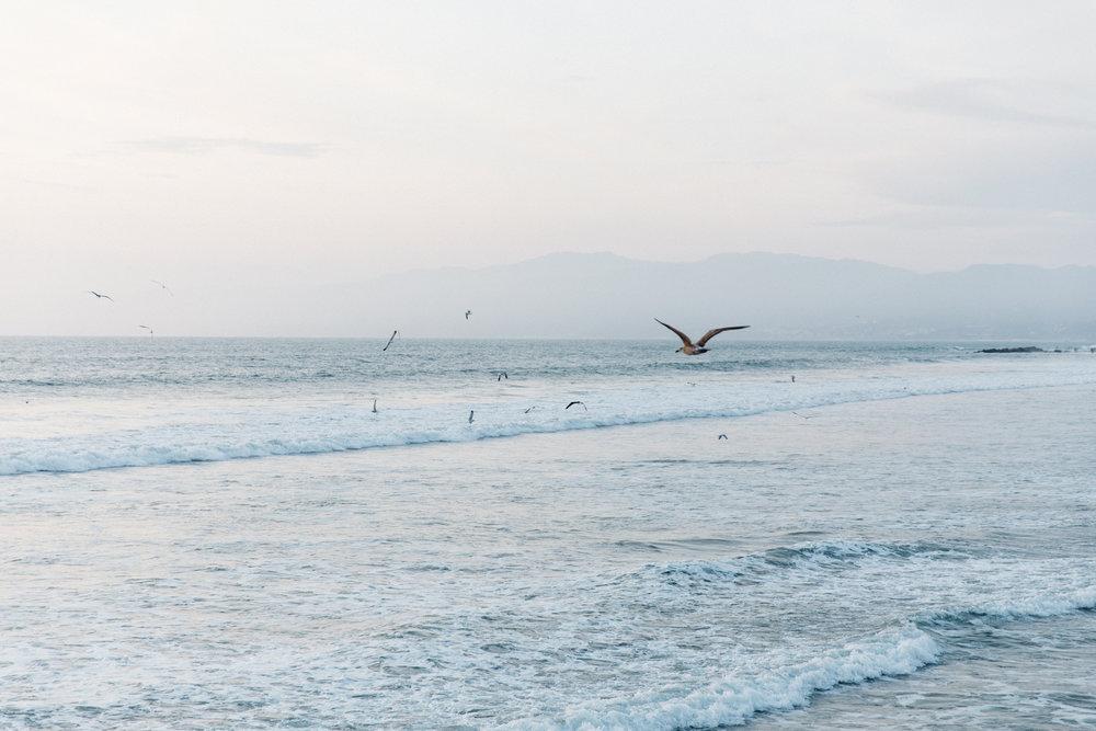 Vencie Beach
