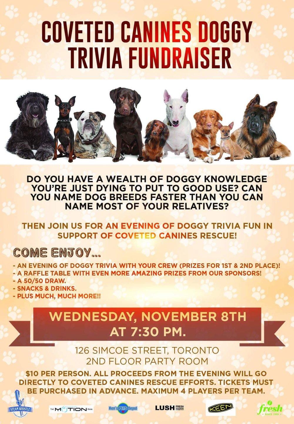 doggy-trivia-info.jpg