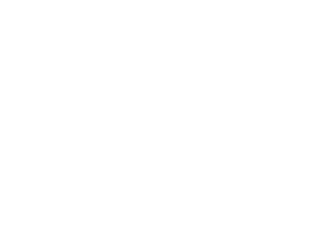 MiMFF 2017 Official Selection Laurels_WHITE.png