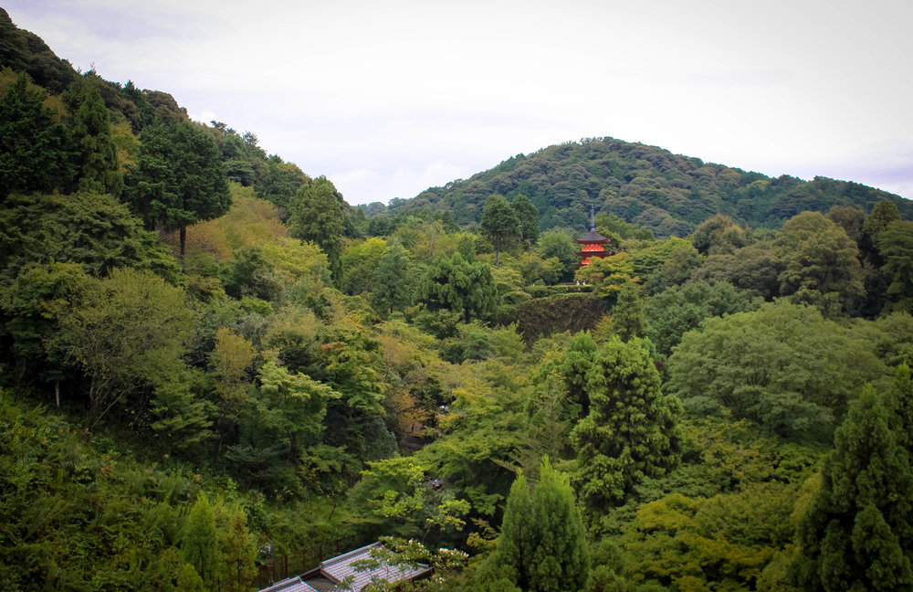 Kiyomizu-dera. Well known for this view in the fall as the colours turn vibrant shades of red and orange. However, I heard that the peak fall colours don't appear until mid-November due to the climate.