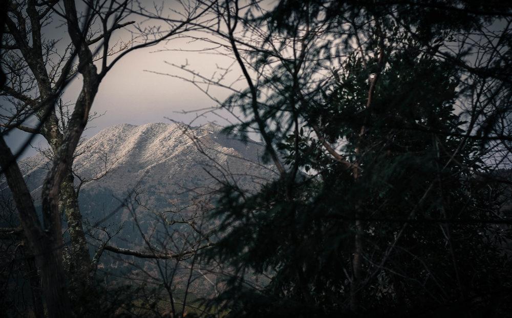 Hoar frost atop Mount Unzen
