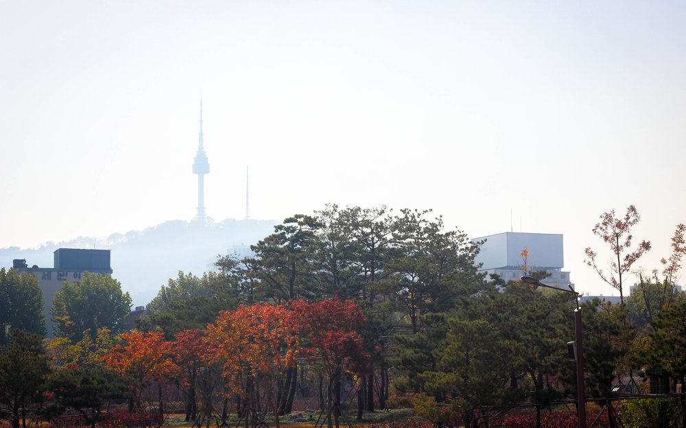Fall colours and Seoul tower peaking out from a hazy sky. The tower is on top of a mountain which I think is kind of cheating as the the tower itself isn't actually that tall.