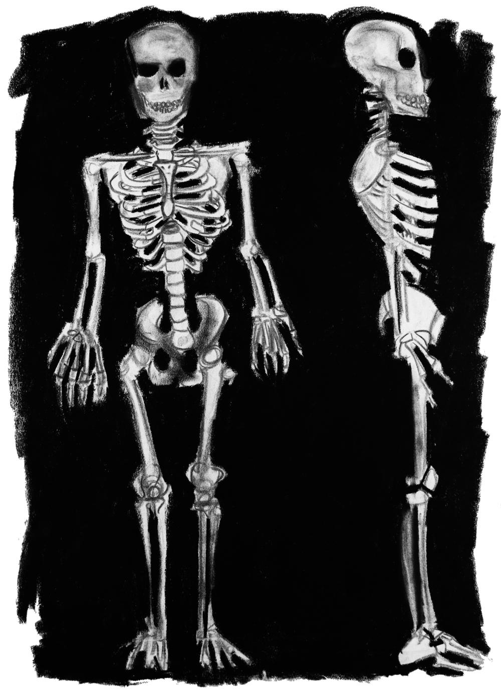 Bones (1997).jpg