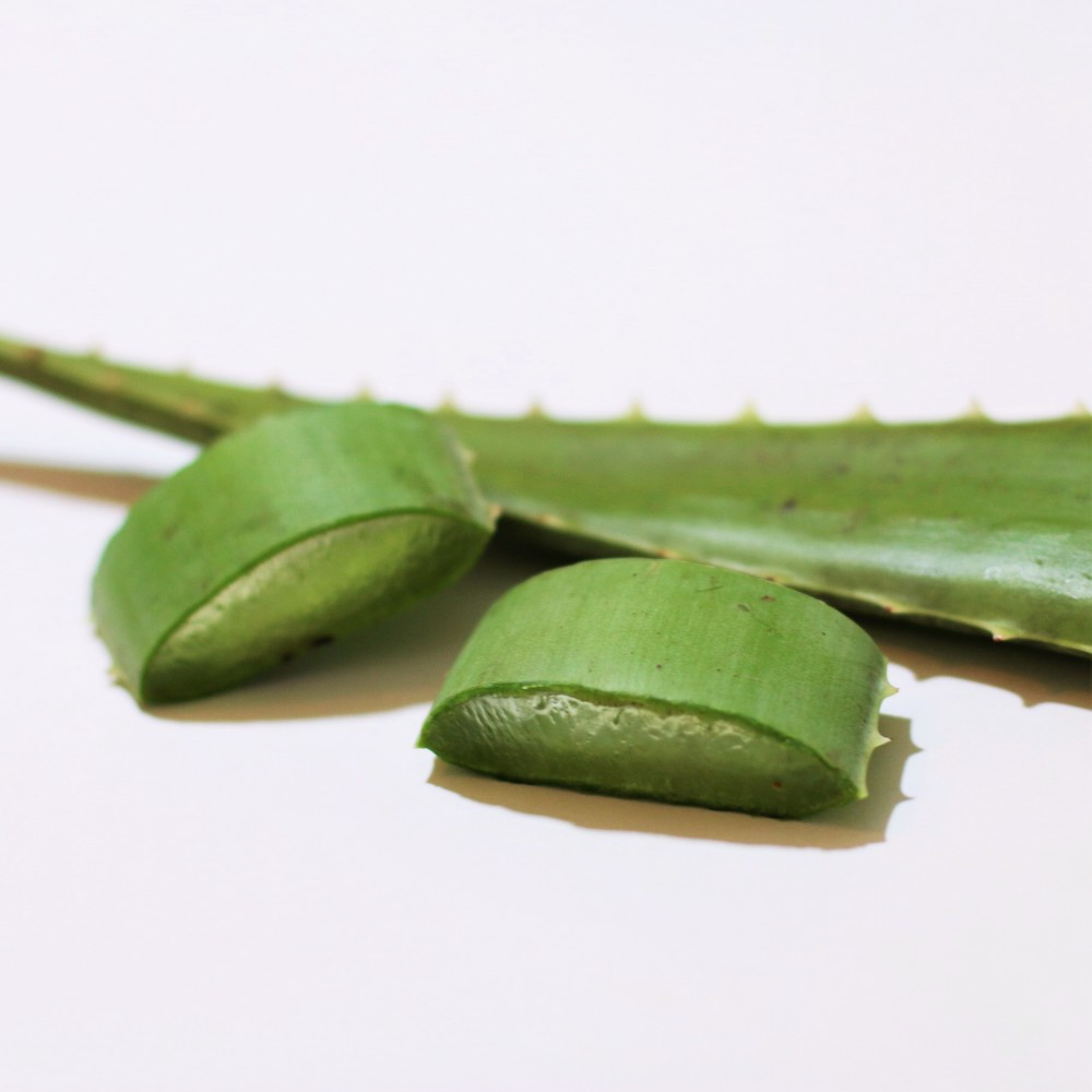 Aloe Vera - Only the finest natural and organic ingredients are used in Naturally Batel Shampoo and Conditioner. We start with fresh hand-cut Aloe Vera, which is the miracle ingredient behind every bottle of shampoo! Aloe Vera works wonders on dry skin and hair, and contains a multitude of different natural healing properties. Dry and itchy scalps are the leading causes of dandruff, but luckily, aloe vera works as a great healing agent by soothing dry and cracked skin. Aloe Vera also contains vitamins A, B, C, and E which smooths, conditions, and adds shine to your hair! The amino acids found in Aloe Vera also helps tame frizz, promote hair growth, and prevent hair loss.