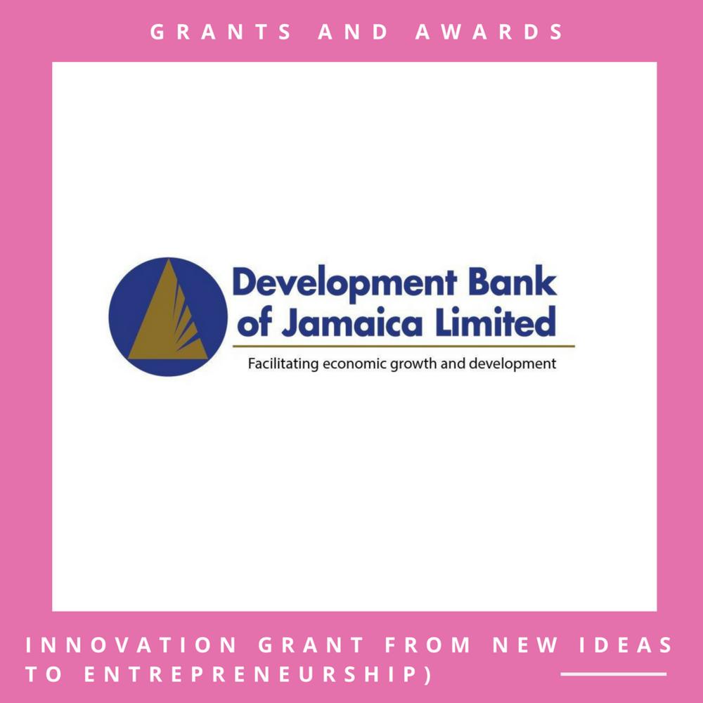 Development-Bank-of-Jamaica-Grants-IGNITE-ForWomentoWomen_ResourcesPlatformforWomen_MillennialforWomen_Caribbean_International.png