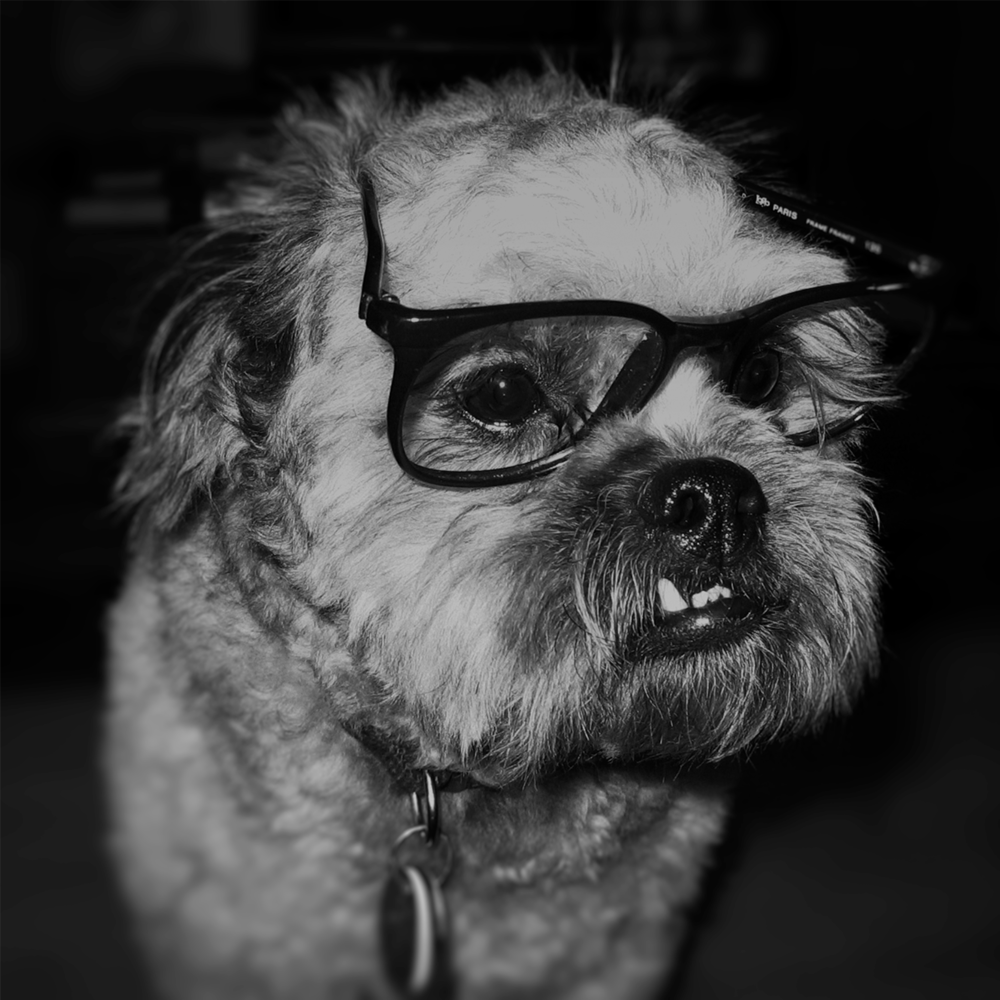 ted_glasses_8x8.png