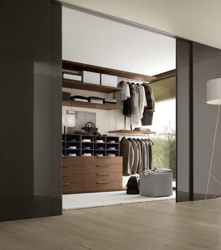 Engaging Modern Minimalist Bedroom Closets And Walk In