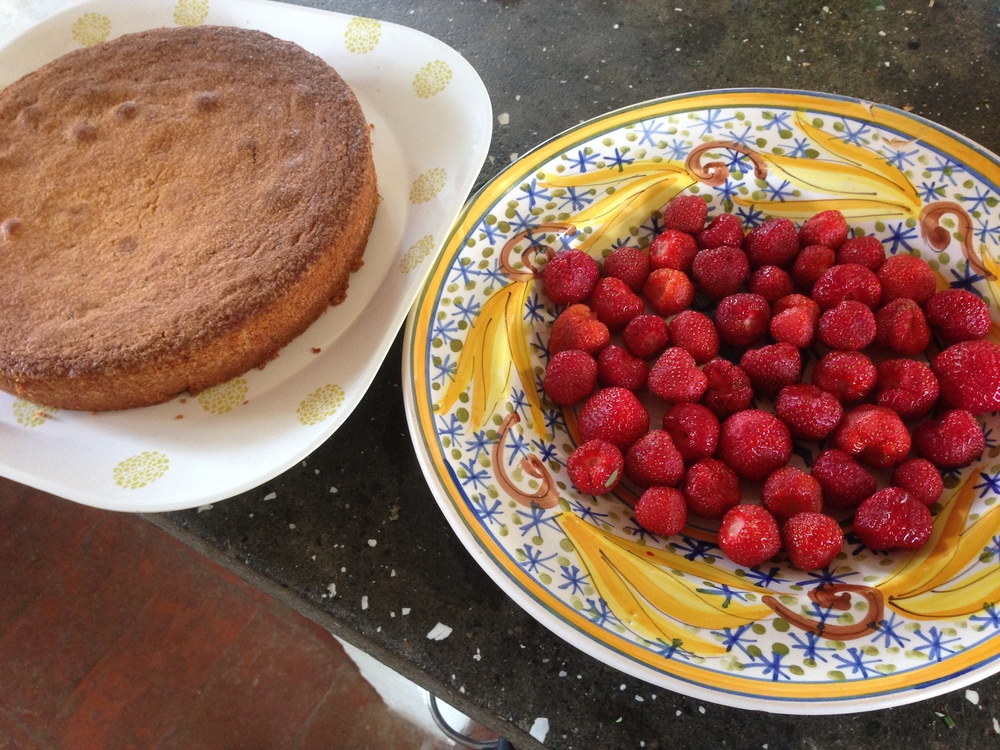 Cake and strawberries.JPG