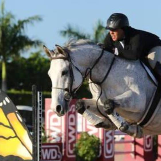 'Travis' showing in the Thoroughbred Division at WEF 2015