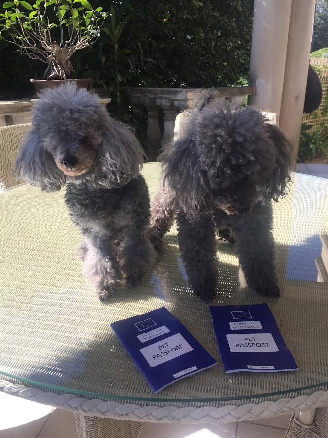 Bella and Baci with their Pet Passports