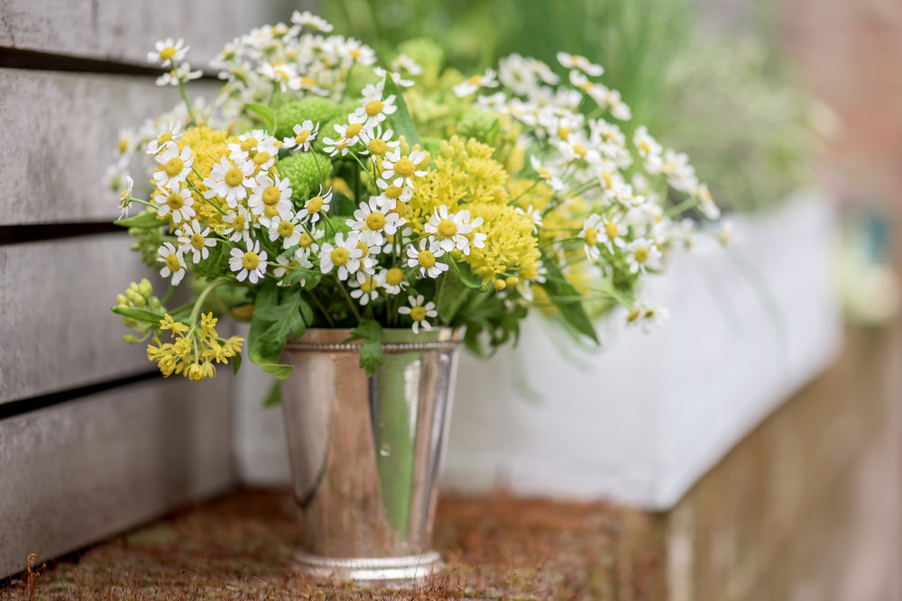 How to Make Your Own Elderflower Cordial - DIY Elderflower Cordial Recipes