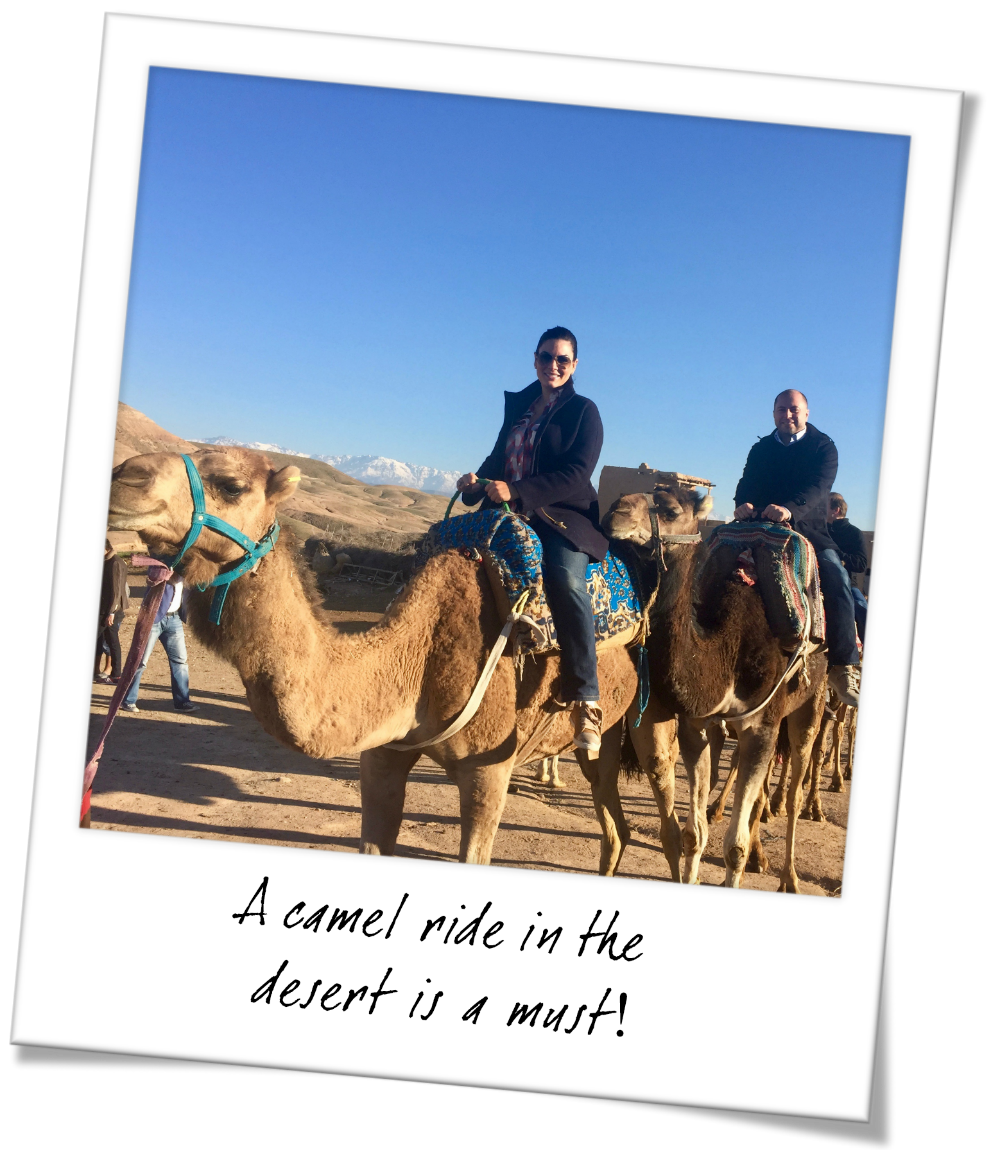 Things you must do in Marrakesh Morocco - Go on a camel ride through the desert