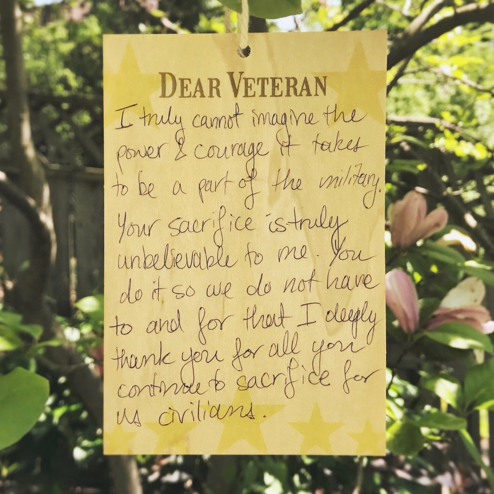 dear veteran In any event, this veteran's day (three days from now as of this writing),  dear america: letters home from vietnam can help get that conversation started.