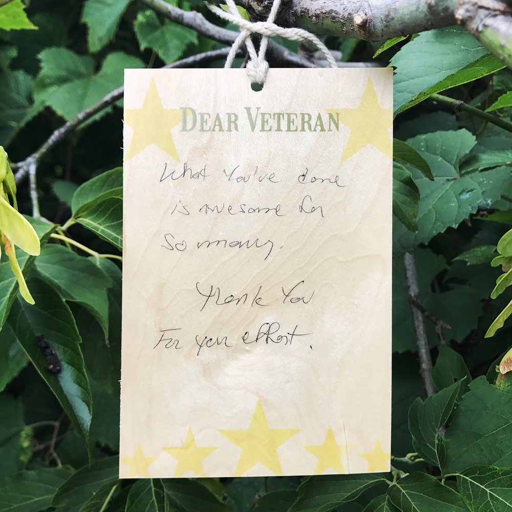 DearVeteran_SEP09_2017.JPG