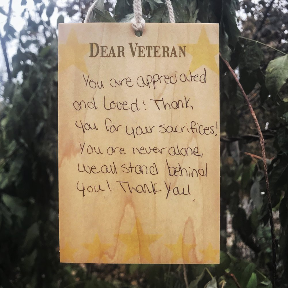 DearVeteran_NOV19_2017.JPG