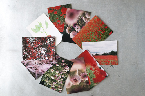 postcard_flowers_84_eshop.JPG