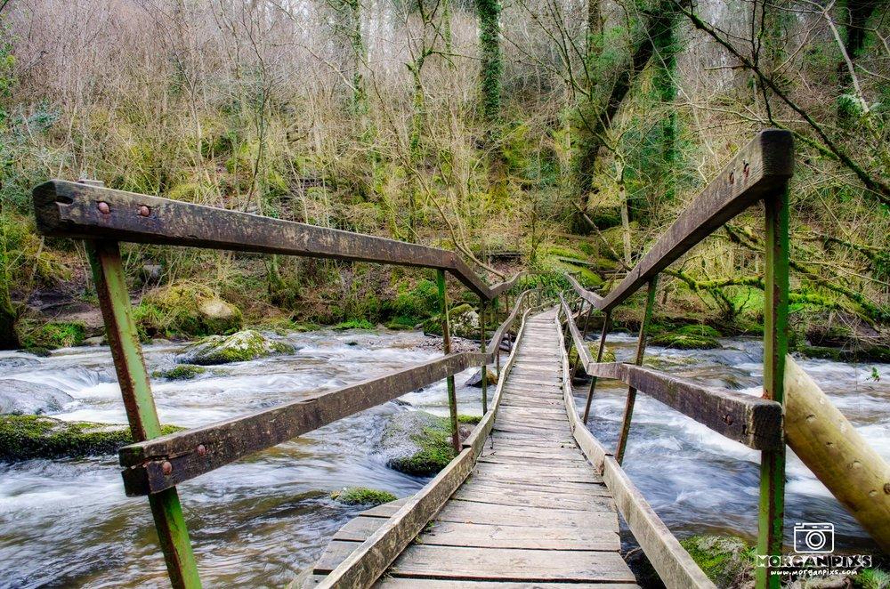 Becky Falls Bridge