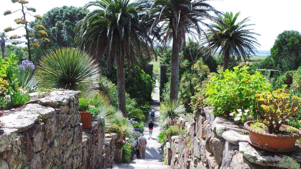 The Abbey Garden On Tresco. Image Courtesy of Tresco Island.
