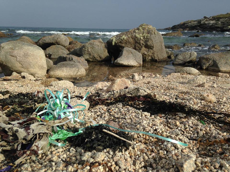 Image courtesy of Plastic Free Scilly.