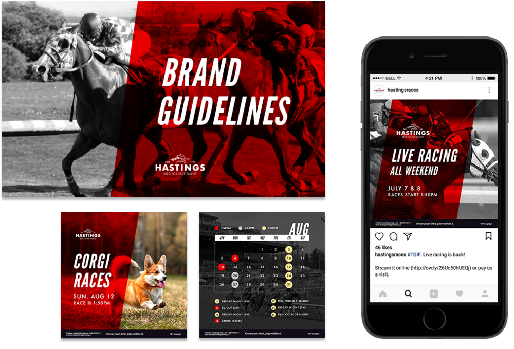 Hastings Racecourse - Updating a brand for younger audiences and curating visually-engaging social media content.