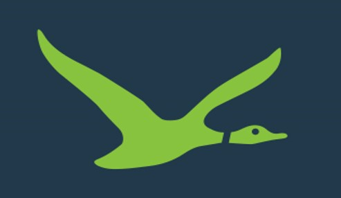VentureSouth Duck