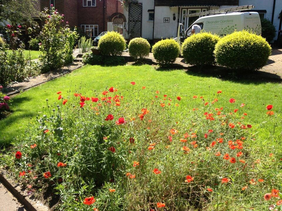 Oleander Gardens Gardening Services in South East London South London Club Card 4.jpg