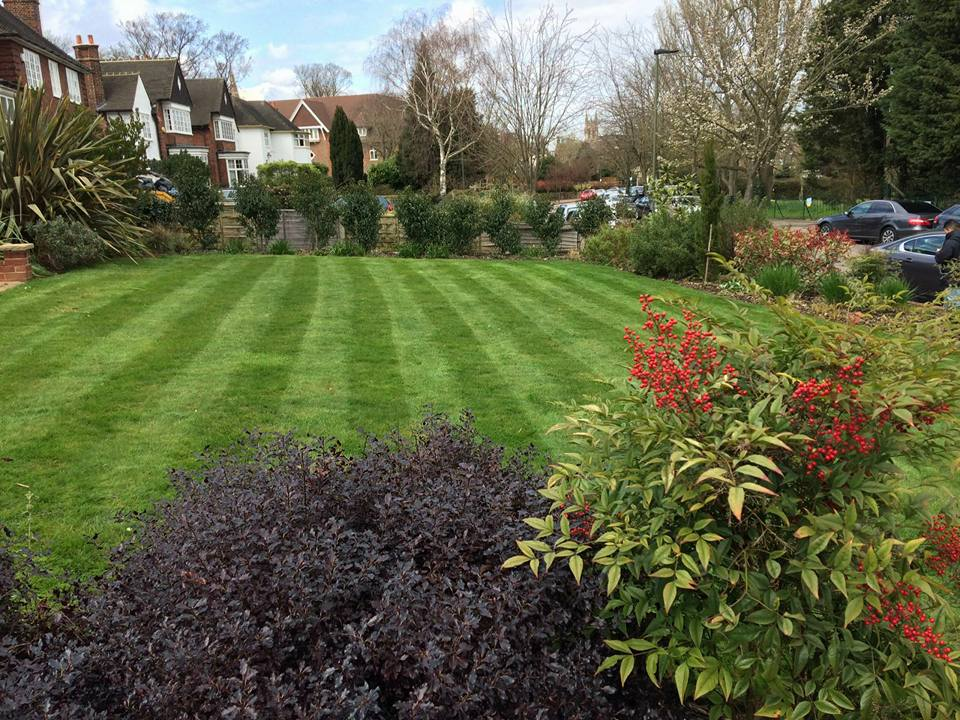 Oleander Gardens Gardening Services in South East London South London Club Card 5.jpg