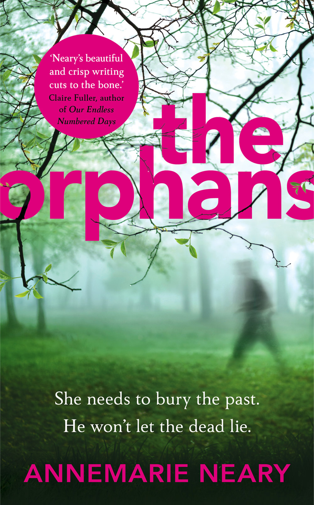 Annemarie Neary THE ORPHANS jacket.jpg