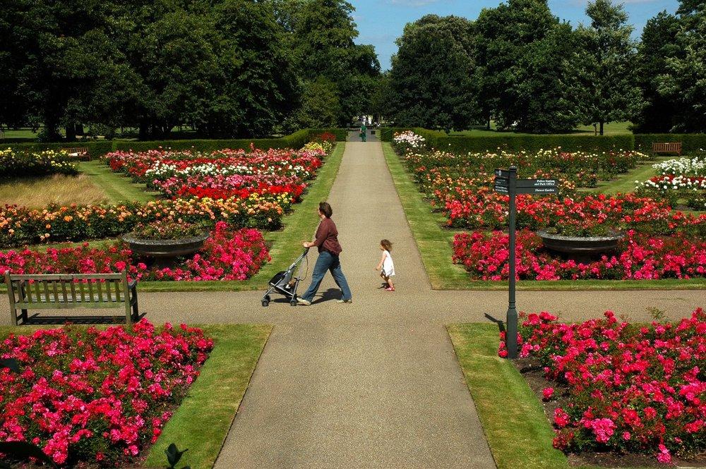 lovely-gardens-738834.jpg